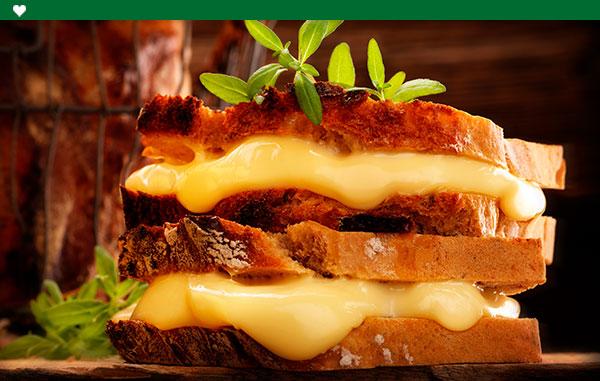 Panes y quesos
